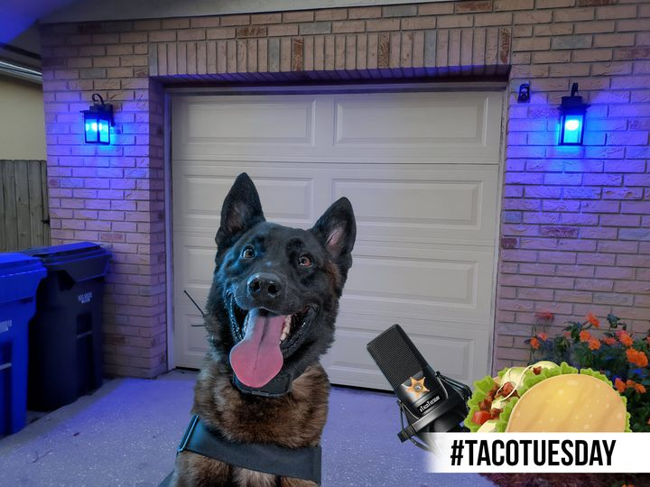 PCSO-K9-Taco-Tuesday-PTTB-2021-Facebook-ad